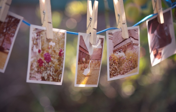 Picture flowers, memories, house, bird, rope, photos, clothespins, goose
