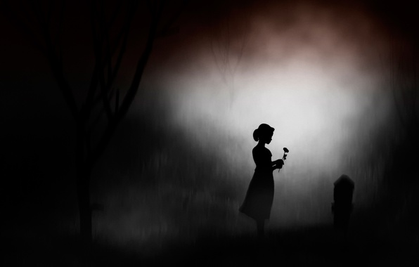 Picture flower, girl, night, memory, silhouette, headstone