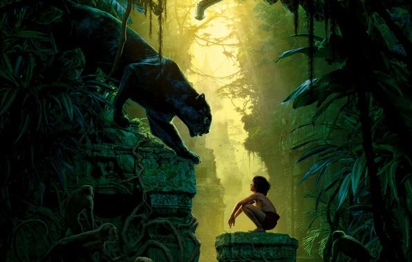 Picture birds, boy, Panther, jungle, fantasy, the ruins, monkey, vines, Bagira, Mowgli, The Jungle Book, Bagheera, …