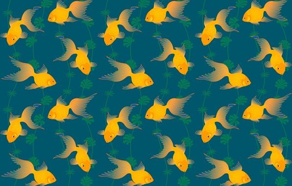 Picture algae, pattern, goldfish, tail