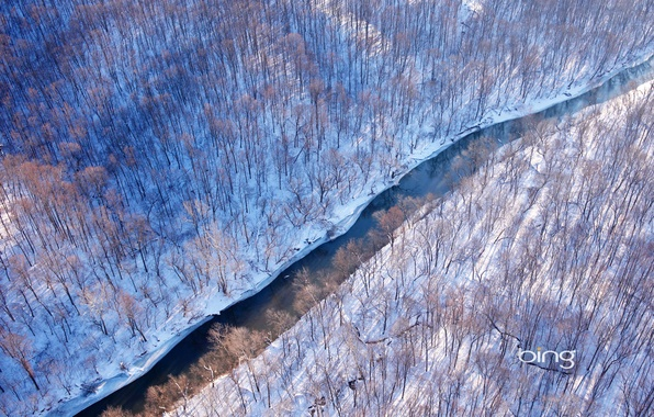 Picture winter, forest, snow, river, USA, Virginia