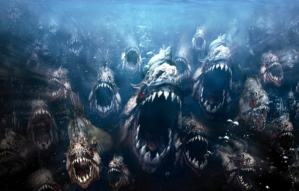 Picture fish, evil, piranhas