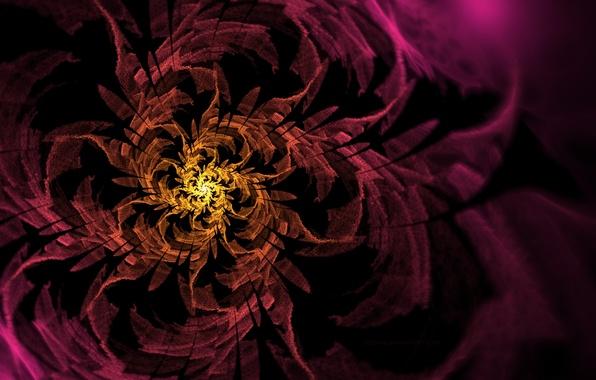 Picture flower, yellow, pink, pattern, spiral, art