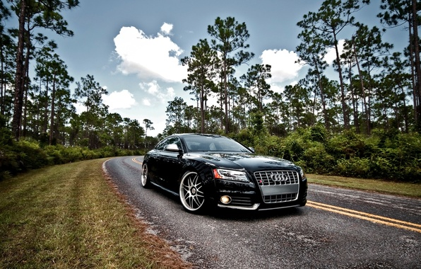 Photo wallpaper audi, black, nature