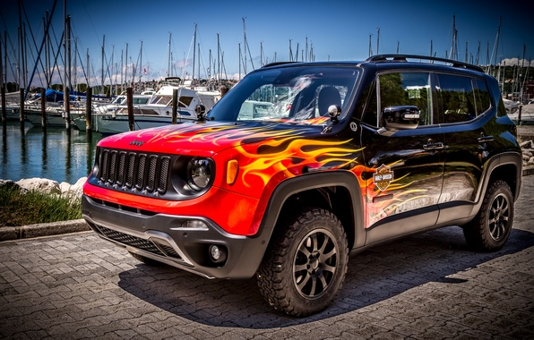 Picture jeep, Jeep, Renegade, renegade