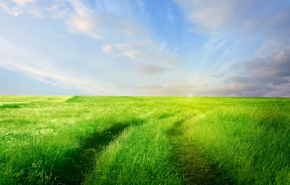Picture road, greens, field, the sky, grass, clouds, nature, horizon