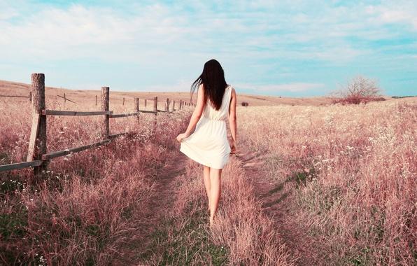 Picture field, grass, Girl, dress, brunette, legs