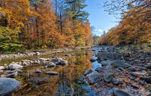 Picture autumn, forest, river, stones