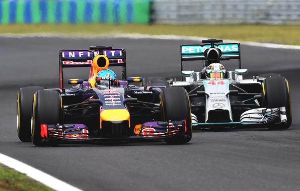 Picture Racer, Formula 1, Red Bull, Sebastian Vettel, Champion, RB10