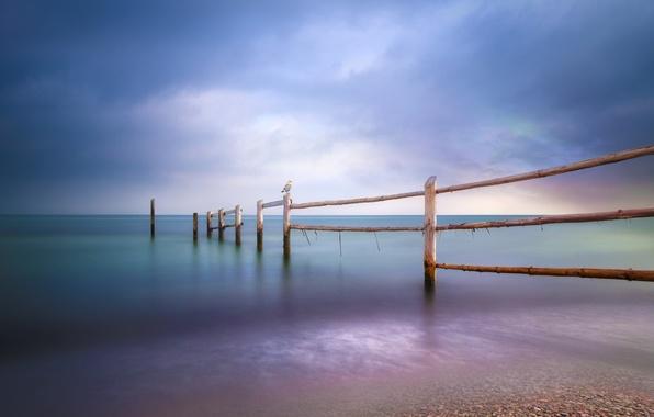 Picture sea, beach, the fence, seagulls, Baltic Sea