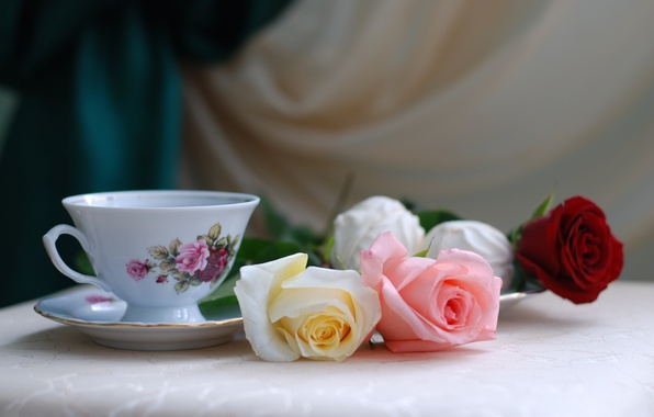 Picture flowers, table, holiday, tea, roses, Cup, still life