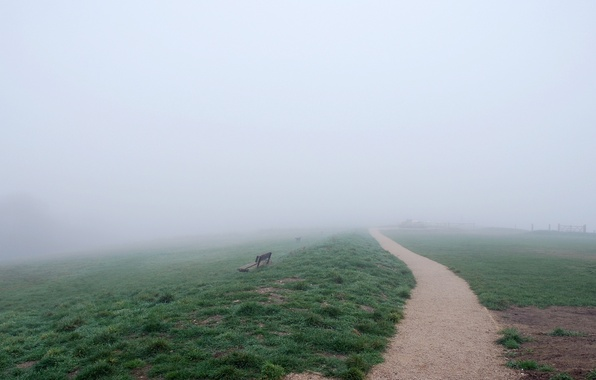 Picture road, field, nature, fog, bench