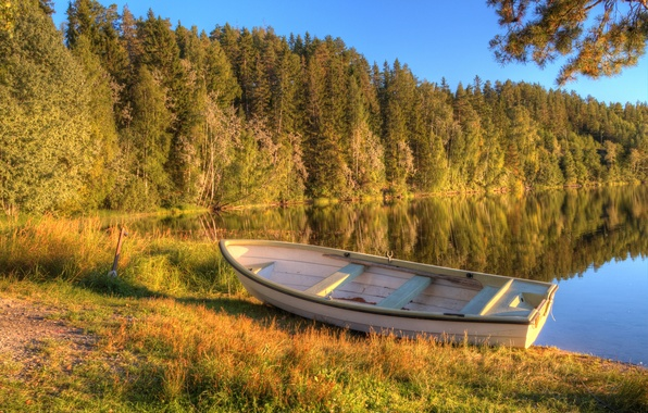 Picture autumn, forest, lake, boat, morning, early