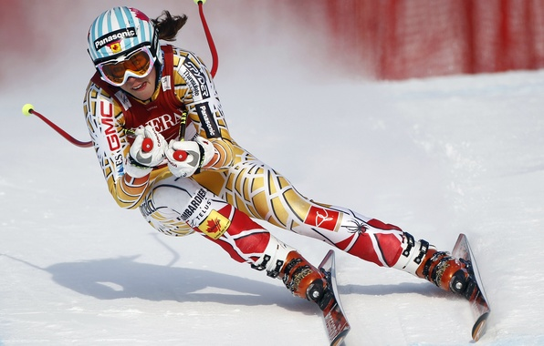 Picture speed, freestyle, biathlon, bobsled, skiing