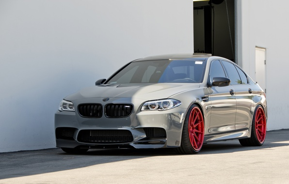 Picture BMW, Gray, F10