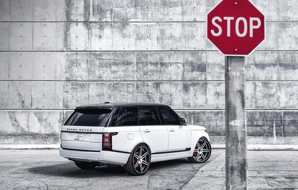 Picture white, white, rear view, land rover, range rover, range Rover, land Rover, black roof, a …