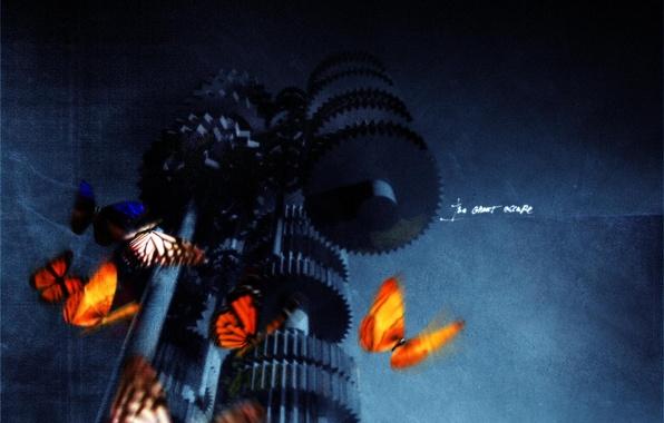 Picture butterfly, mechanism, gear