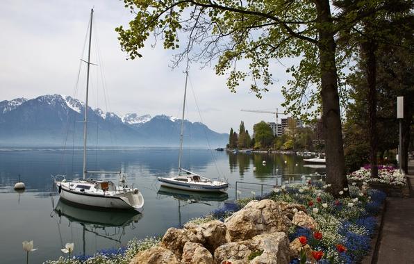 Picture landscape, mountains, nature, coast, yacht, Switzerland, Montreux, sailing