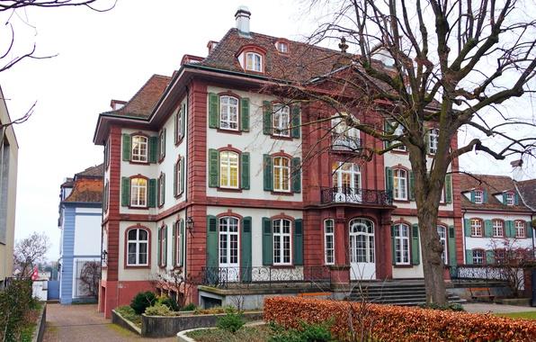Picture autumn, house, tree, Switzerland, yard, the bushes, Basel