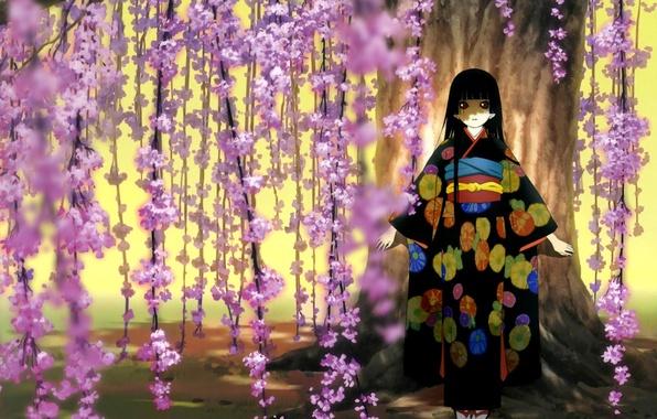 Picture Sakura, girl, kimono