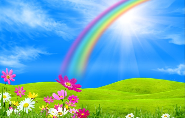Picture field, trees, landscape, flowers, nature, rainbow