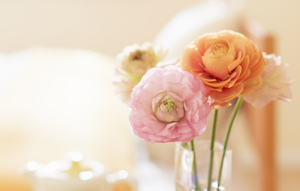 Picture flowers, photo, mood, Wallpaper, tenderness, bouquet, spring, vase