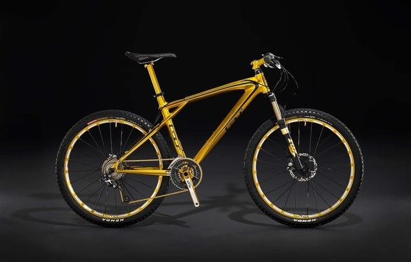 Picture Bike, hardtail