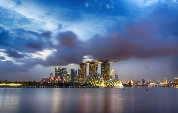 Picture the sky, night, clouds, the city, Bay, Singapore, Singapore, Gardens by the Bay