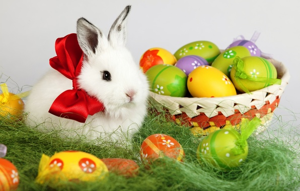 Picture white, holiday, basket, eggs, spring, rabbit, Easter, bow, Easter, Easter
