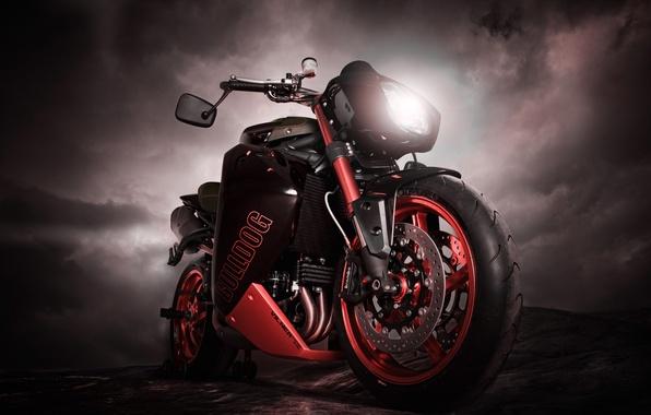 Picture Moto, bike, triumph speed tripple bulldog, triumph