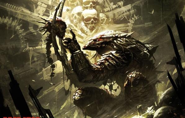 Picture predator, skull, predator