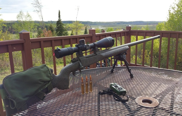 Picture weapons, sniper rifle, T-76