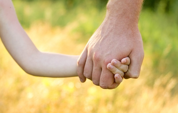 Picture nature, children, background, power, mood, child, protection, hands, baby, male, guy, widescreen, full screen, HD …