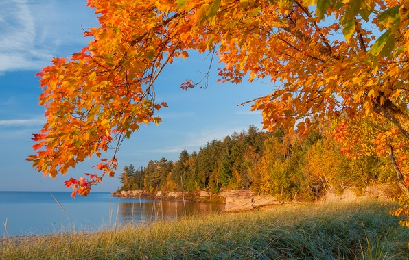 Picture sea, autumn, forest, the sky, leaves, lake, tree, rocks, shore, branch, Michigan, the crimson