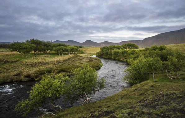Picture summer, trees, river, hills, Næfurholt, South Iceland