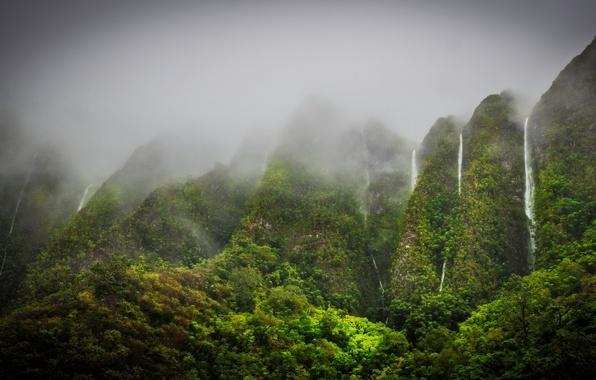 Picture mountains, fog, vegetation, waterfalls