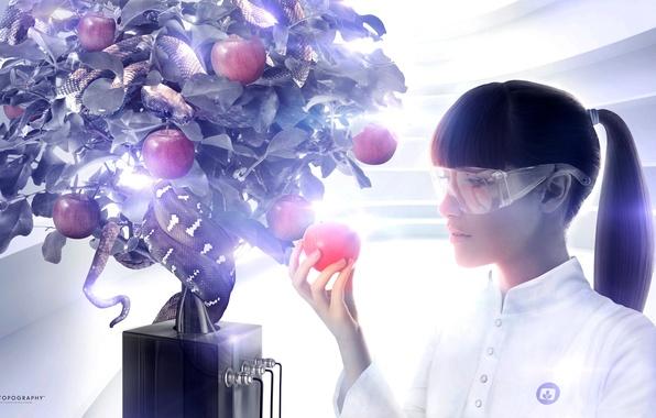 Picture creative, tree, Apple, glasses, snakes, Eva, desktopography, the fruit, variation