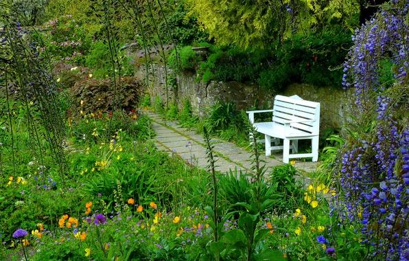 Picture flowers, Park, garden, bench