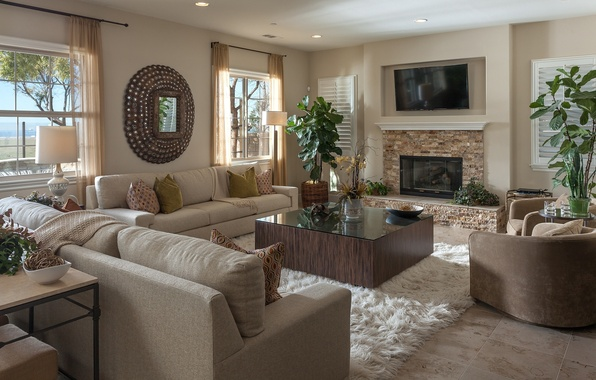 Picture design, style, sofa, chair, mirror, fireplace, pot, living room