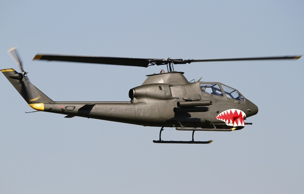 Picture flight, helicopter, Cobra, Bell, TAH-1P