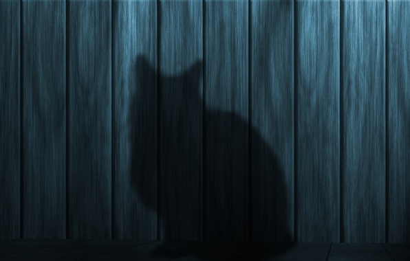 Picture cat, Board, shadow, Wall, silhouette, texture, wooden