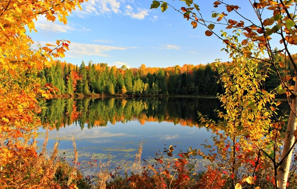 Picture autumn, the sky, leaves, clouds, trees, lake, pond, Autumn, September, Golden autumn, Golden autumn