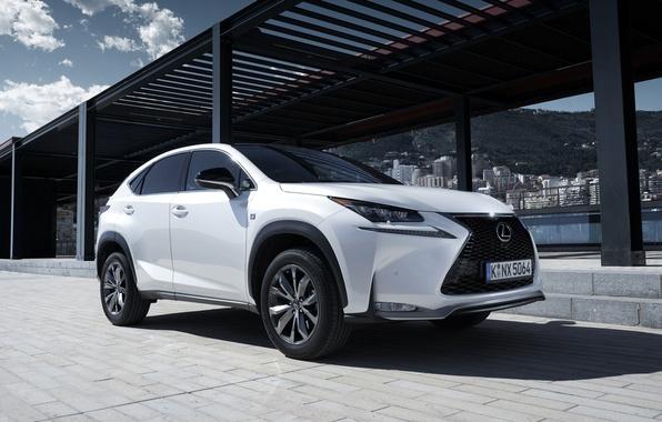 Picture Lexus, Lexus, F-Sport, 2014, EU-spec, NX 200