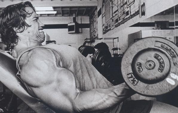 Picture man, actor, Arnold Schwarzenegger, rocking, the gym, dumbbells, Arnold Schwarzenegger