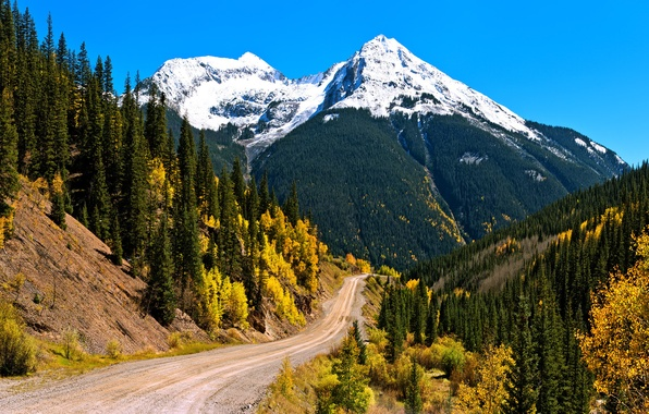 Picture autumn, forest, the sky, snow, mountains, slope