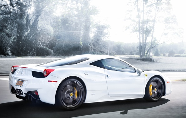 Picture road, white, trees, speed, white, ferrari, Ferrari, rear view, road, Italy, 458 italia
