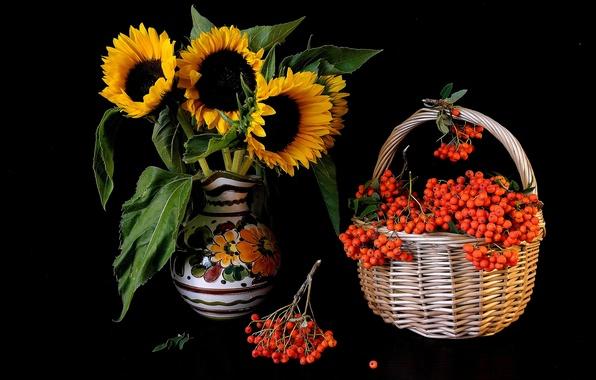 Picture flowers, basket, sunflower, vase, Rowan