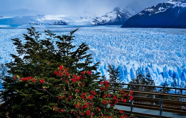 Picture mountains, bridge, glacier, Argentina, Argentina, Andes, Patagonia, Patagonia, Andes, Perito Moreno Glacier, Santa Cruz Province, …