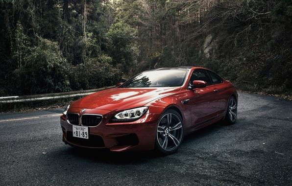 Picture Forest, Machine, Orange, Orange, Coupe, Bmw, Coupe, BMW, Japan Spec