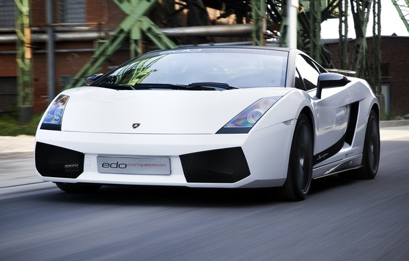 Picture white, movement, supercar, gallardo, lamborghini, Lamborghini, edo competition, Gallardo, superleggera, Superleggera